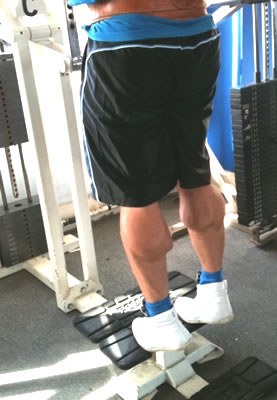 Training calves