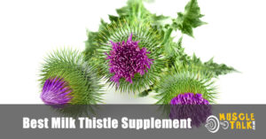 Milk Thistle plants that are used to make the supplements